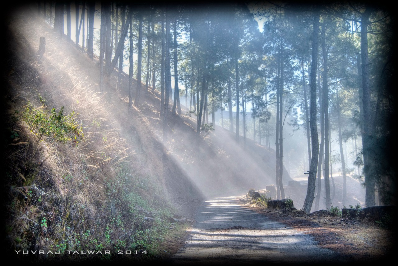 The road from Lohaghat