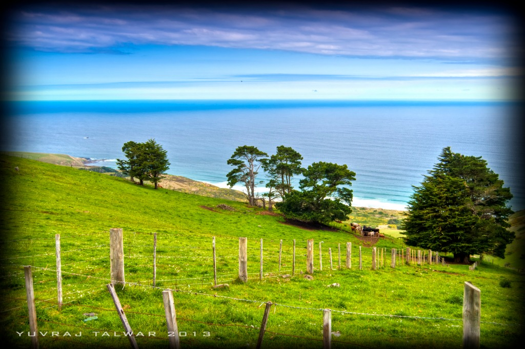 Dunedin - DSC_4365_tonemapped