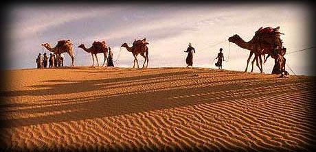 desert-safari-1