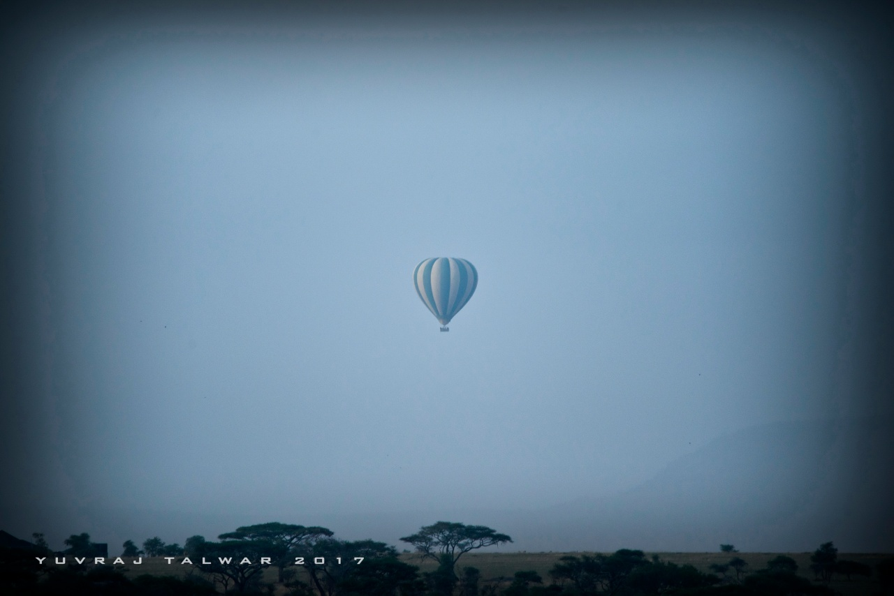 Serengeti - DSC_4692
