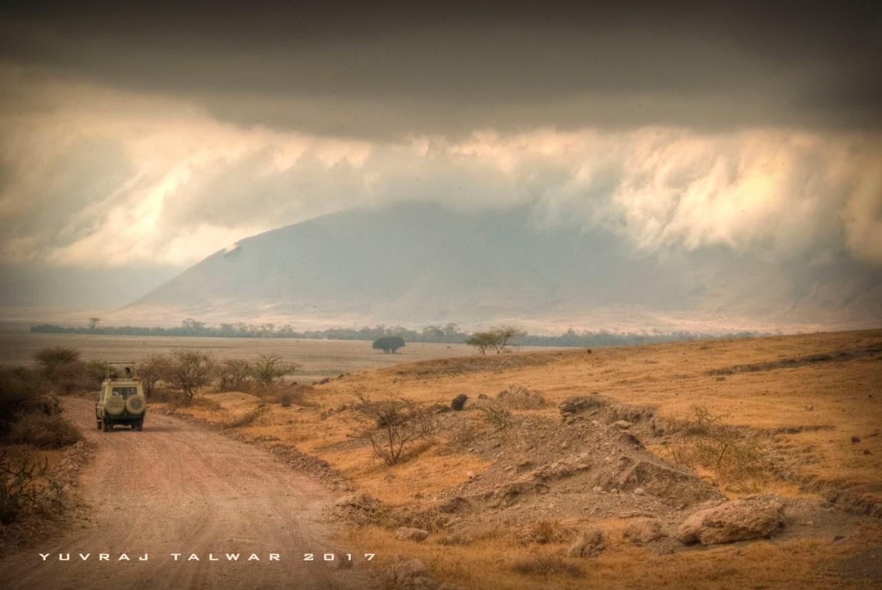 PhotoPhobia – Serengeti,Tanzania
