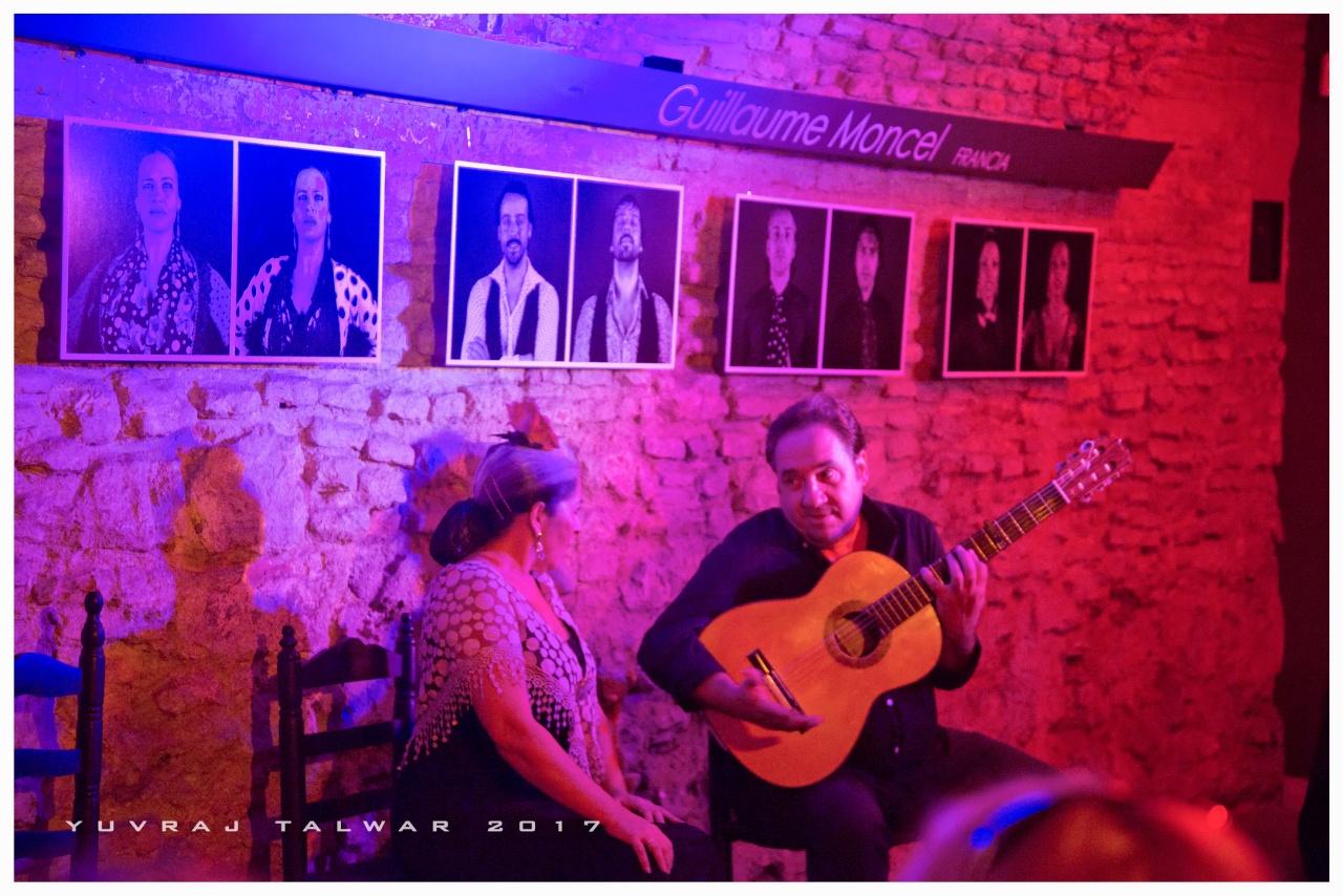 Flamenco - 01